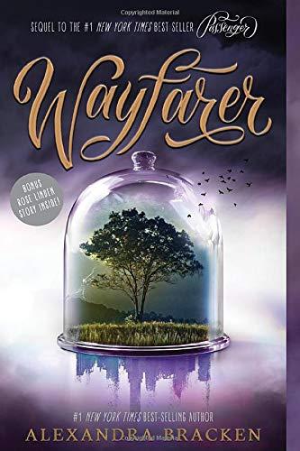 9781484787519: Wayfarer (Passenger)