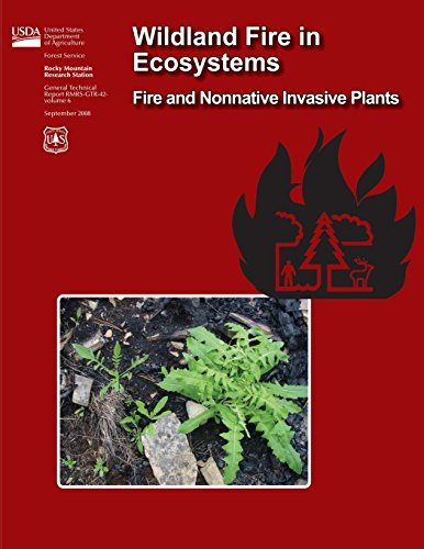 9781484859216: Wildland Fire in Ecosystems