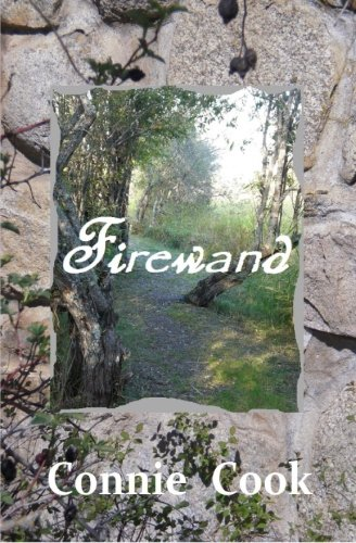 9781484927090: Firewand