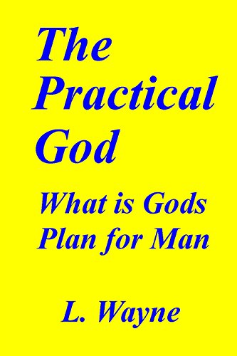 9781484994306: The Practical God: Gods Purpose for You