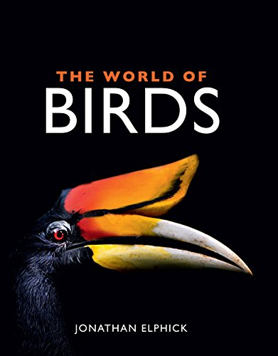 9781486302925: The World of Birds