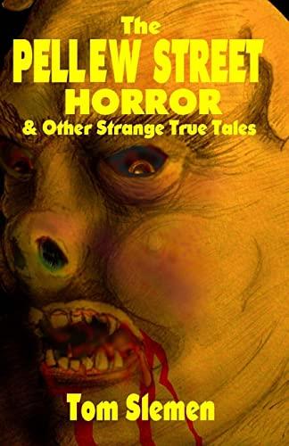 9781489503084: The Pellew Street Horror
