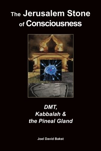 9781489543776: The Jerusalem Stone of Consciousness: DMT, Kabbalah and the Pineal Gland