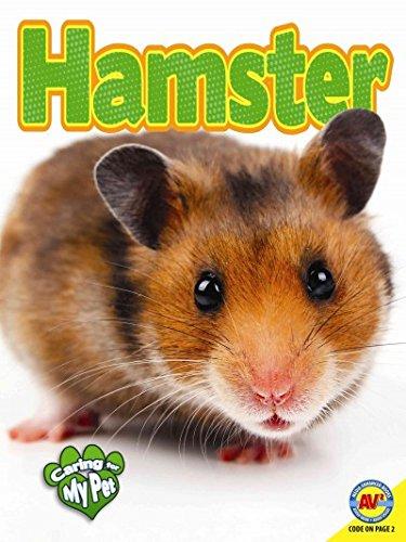 Hamster (Paperback): Jill Foran