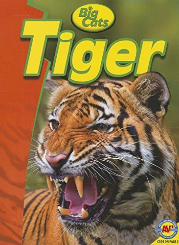 Tiger (Big Cats): Riddolls, Tom