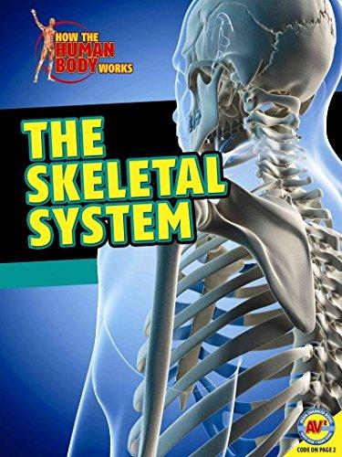 The Skeletal System (Hardcover): Simon Rose