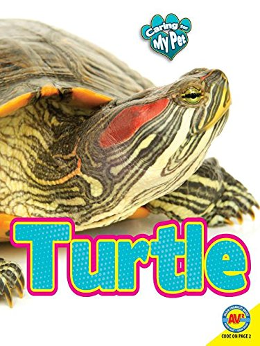 9781489629753: Turtle (Caring for My Pet)