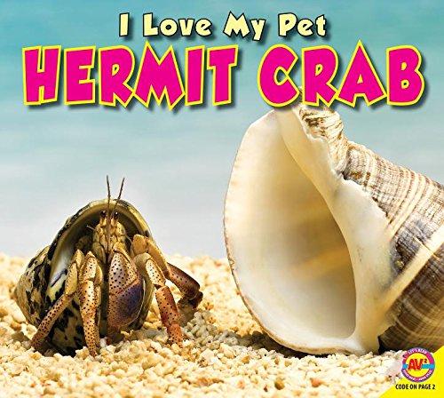 9781489630995: Hermit Crab (I Love My Pet)