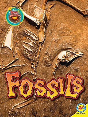 9781489640826: Fossils (Focus on Earth Science)