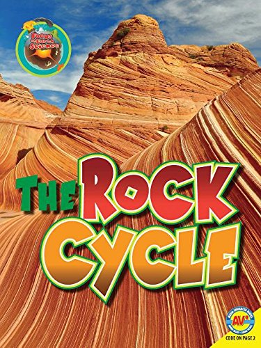 9781489640949: The Rock Cycle (Focus on Earth Science)