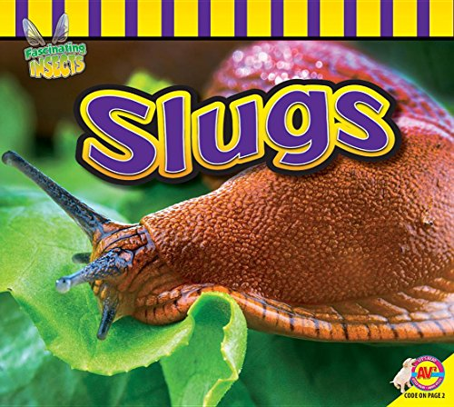 9781489642387: Slugs (Fascinating Insects)