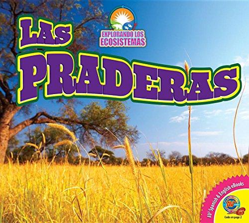 9781489643117: Las Praderas (Grasslands) (Explorando Los Ecosistemas / Exploring Ecosystems)