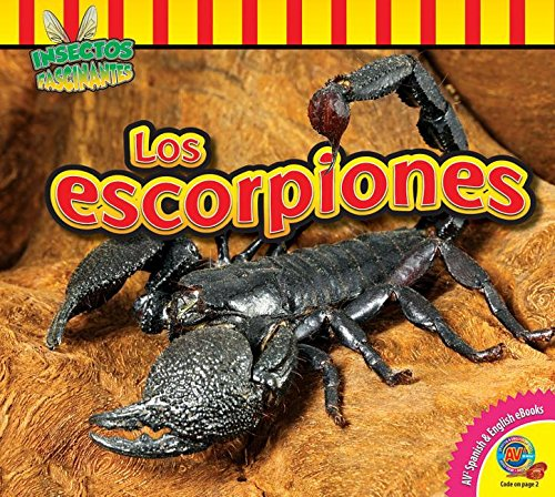 Los Escorpiones (Scorpions) (Insectos Fascinantes (Fascinating Insects)): Nugent, Samantha