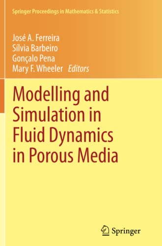 9781489989482: Modelling and Simulation in Fluid Dynamics in Porous Media (Springer Proceedings in Mathematics & Statistics)
