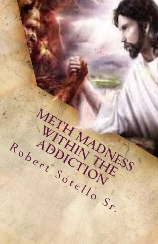 9781490504681: METH Madness Within The Addiction