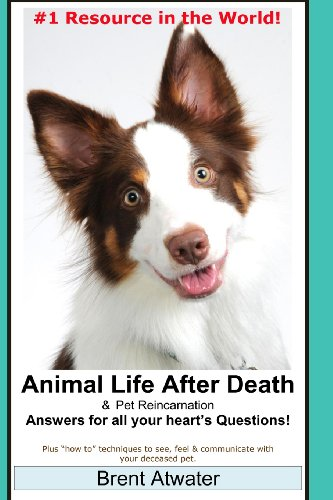 9781490516561: Animal Life After Death & Pet Reincarnation: Answers for all your heart's Questions!