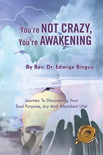 9781490712185: You're Not Crazy, You're Awakening: Journey To Discovering Your Soul Purpose, Joy And Abundant Life!
