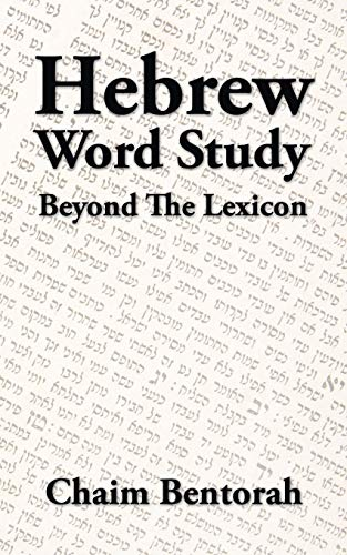 9781490739618: Hebrew Word Study: Beyond the Lexicon