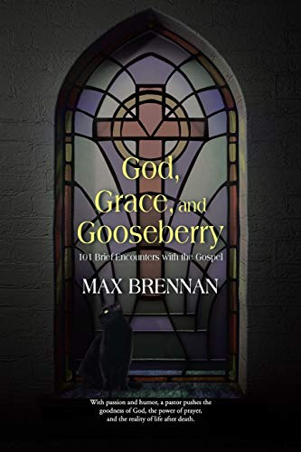 God, Grace, and Gooseberry: 101 Brief Encounters with the Gospel: Brennan, Max