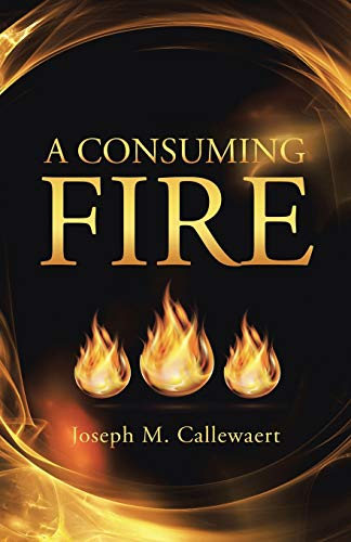 9781490883588: A Consuming Fire