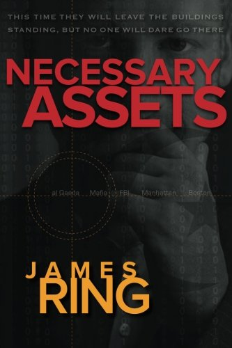 9781490997469: Necessary Assets