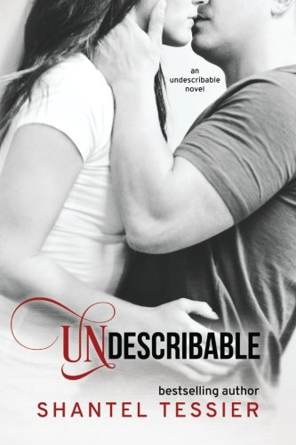 9781490997957: Undescribable (Volume 1)