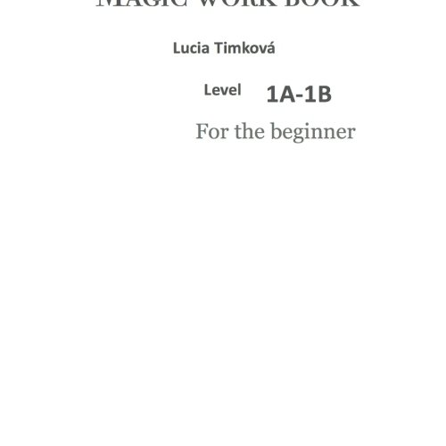 9781490998589: Magic work book - Level 1A-1B: For the beginner