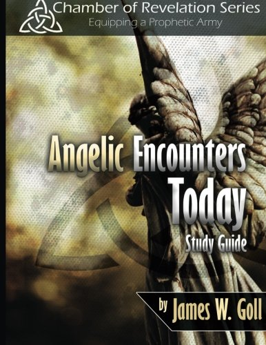 9781491005446: Angelic Encounters Today Study Guide
