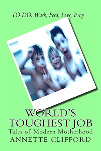 9781491060506: World's Toughest Job: Tales of Modern Motherhood
