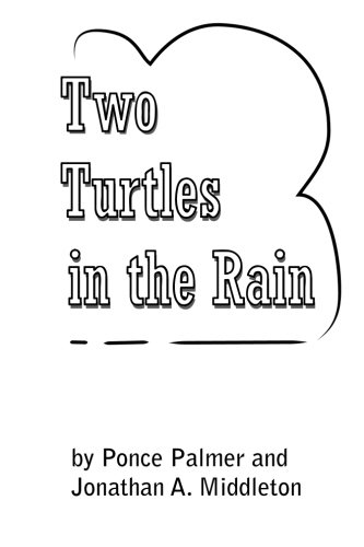 9781491062760: Two Turtles in the Rain