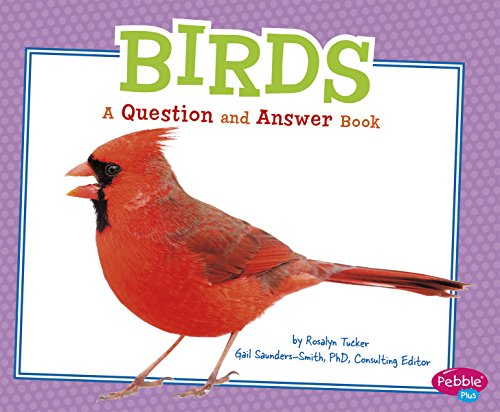 Birds: A Question and Answer Book (Animal Kingdom Questions/Answe): Martin, Isabel