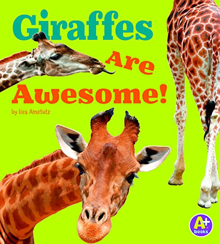 Giraffes Are Awesome! (Awesome African Animals!): Lisa J. Amstutz