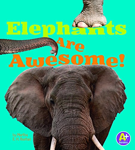 9781491417669: Elephants Are Awesome! (Awesome African Animals!)