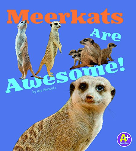 9781491417690: Meerkats Are Awesome! (Awesome African Animals!)