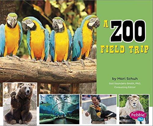 A Zoo Field Trip (Let's Take a: Isabel Martin