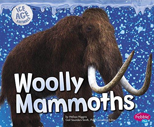 9781491421024: Woolly Mammoths (Ice Age Animals)