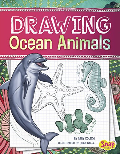 Drawing Ocean Animals (Drawing Amazing Animals): Colich, Abby