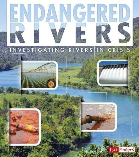 Endangered Rivers: Investigating Rivers in Crisis (Endangered Earth): Iyer, Rani