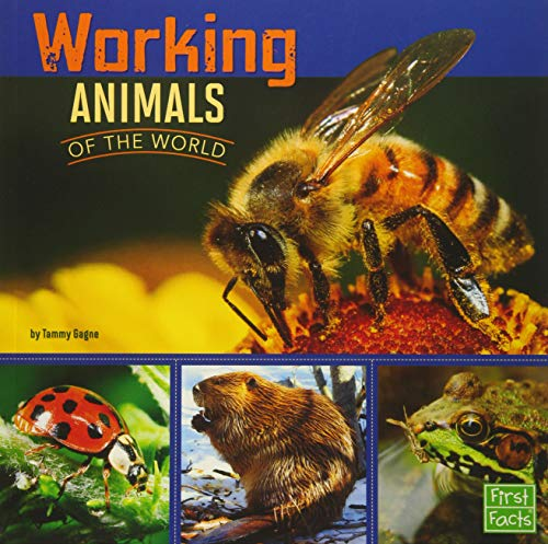 9781491422380: Working Animals of the World (All About Animals)