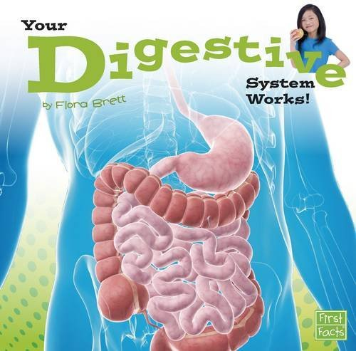 9781491422489: Your Digestive System Works! (Your Body Systems)