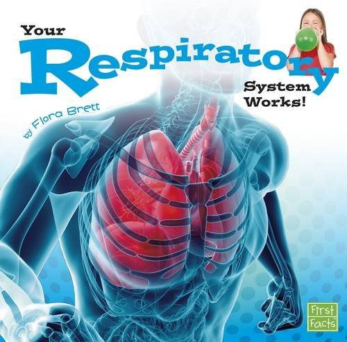 9781491422519: Your Respiratory System Works! (Your Body Systems)