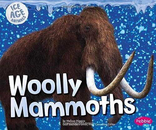 9781491423202: Woolly Mammoths (Ice Age Animals)
