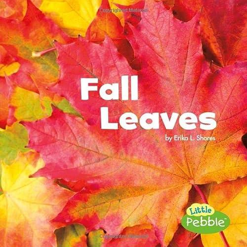 9781491460153: Fall Leaves (Celebrate Fall)