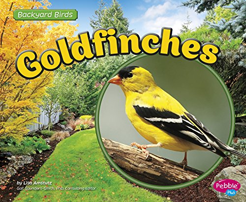 Goldfinches (Backyard Birds): Amstutz, Lisa J.