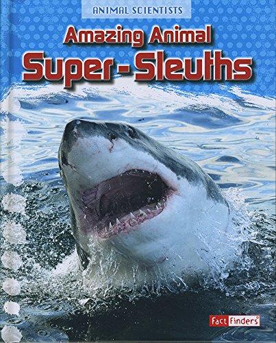 Amazing Animal Super-Sleuths (Animal Scientists): Gray, Leon