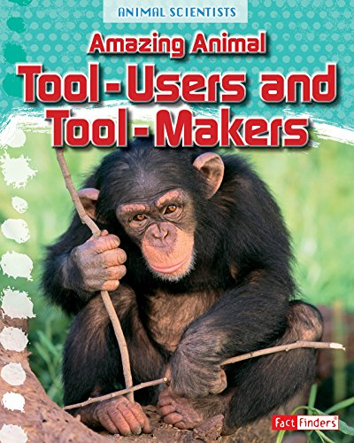 Amazing Animal Tool-Users and Tool-Makers (Animal Scientists): Gray, Leon