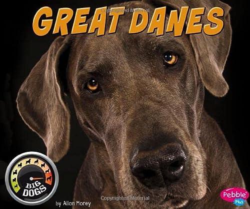 9781491479780: Great Danes (Big Dogs)