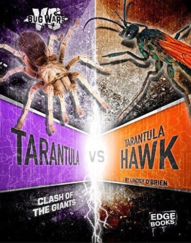 9781491480687: Tarantula vs. Tarantula Hawk: Clash of the Giants (Bug Wars)