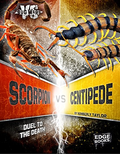 Scorpion vs. Centipede: Duel to the Death (Bug Wars): Kimberly Feltes Taylor