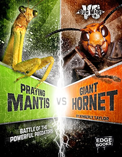 Praying Mantis vs. Giant Hornet: Battle of the Powerful Predators (Bug Wars): Klepeis, Alicia Z.